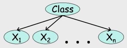 a diagram depicting a Naive Bayes